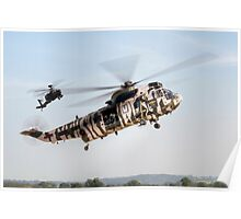 Sea King and Apache Helicopters Poster