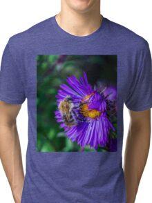 Bee 17 Tri-blend T-Shirt