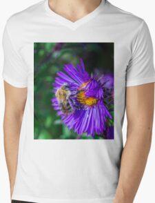 Bee 17 Mens V-Neck T-Shirt