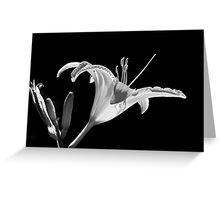 Reaching out Greeting Card
