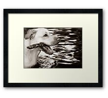 Retrieval #2 Framed Print