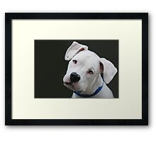 """""""Will this pose do....?"""" Framed Print"""