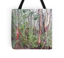 130 Shipleys in Mist Tote Bag
