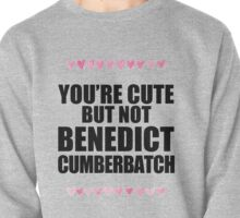 Cute but not Benedict Cumberbatch Pullover