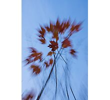 Abstract Impressions of Fall - the Song of the Wind  Photographic Print