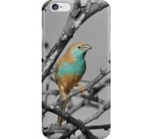 Blue Waxbill - Selective Beauty from Nature iPhone Case/Skin