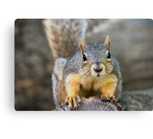 The toll is two peanuts please... Canvas Print