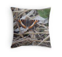 Milbert's Tortoiseshell Butterfly Throw Pillow