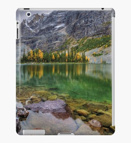 Mary Lake iPad Case/Skin