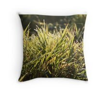 dew drops in lights on green grass Throw Pillow