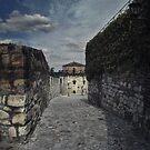 Cobbled Path by Peter Kurdulija