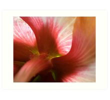 The Great Hibiscus Art Print