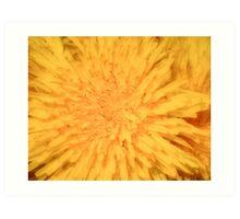 Yellow Dandelion Art Print