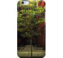 Fall Triumphant iPhone Case/Skin