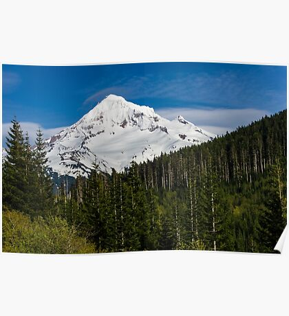 Snow covered Mount Hood Poster