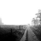 Walking in de Fog by M. van Oostrum