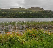 View across Lough Glencar by Mark Bangert