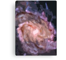 Galaxy Print Canvas Print