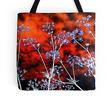 Tote Bag 14.......................Lace On Sunset by Fara
