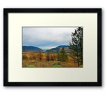 Beautiful landscape picture. Blue mountain, yellow and green grasses, trees. Framed Print