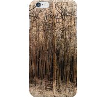 Sepia Aspens iPhone Case/Skin