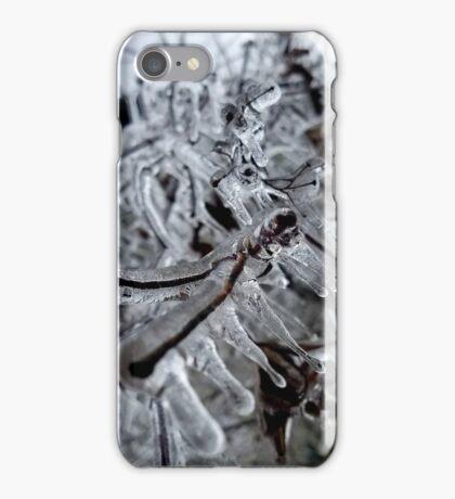 Nature's Ice Sculptures iPhone Case/Skin