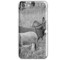 Three amigos  iPhone Case/Skin