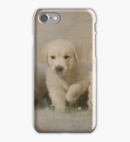 Triple Treat iPhone Case/Skin