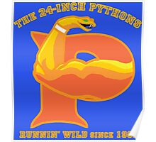 The 24-Inch Pythons Poster