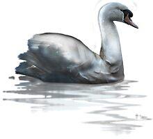 Bicep Swans  by Hiviral