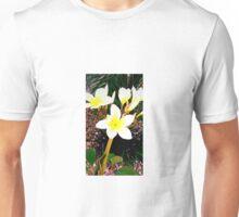 Beautiful Plumeria Flowers  Unisex T-Shirt