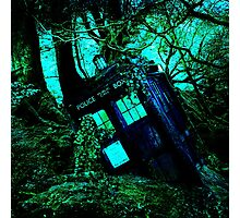 tardis-chested in the woods Photographic Print