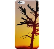 A tree grows in New York City iPhone Case/Skin