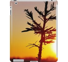 A tree grows in New York City iPad Case/Skin