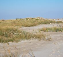 Sand dune, Assateague by WhiteCatPhoto