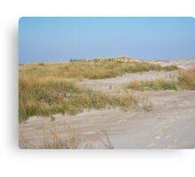Sand dune, Assateague Canvas Print