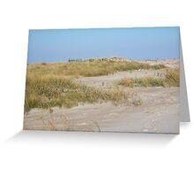 Sand dune, Assateague Greeting Card