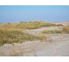 Sand dune, Assateague Photographic Print