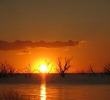 Sunset - Darling River, Medindie Lakes, NSW. by Kay Cunningham