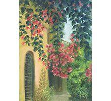 Picturesque patio_Pastel painting Photographic Print