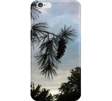 """Pine Cone"" iPhone Case/Skin"