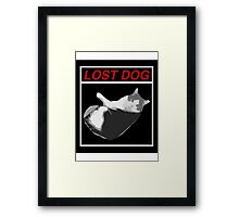 Lost Dog Framed Print