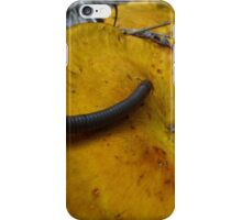 I'm late, I'm late for a very important date! iPhone Case/Skin