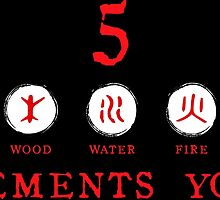 5 Elements symbols with text on white by DCornel