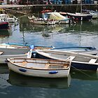 Harbour Boats by kalaryder
