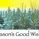 Season's Good Wishes by Marilyn Cornwell