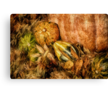 Gourds and Leaves Of Autumn Canvas Print