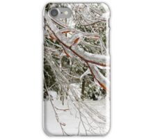 Ice Storm iPhone Case/Skin