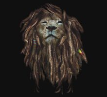 Lion Of Judah by rcmaurag