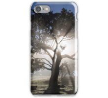 ~ Shine On ~ iPhone Case/Skin